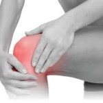 knee muscle and joint pain