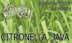 Citronella Essential Oil of the Month