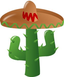 cinco de mayo sombrero and cactus