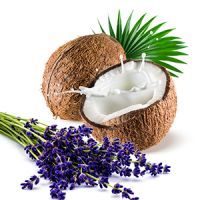 Coconut Milk Lavender Fragrance Oil