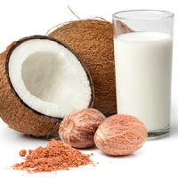 Spiced Coconut Milk BBW Type Fragrance Oil *