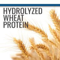 Hydrolyzed Wheat Protein