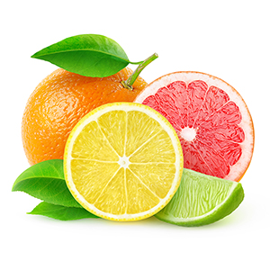 Grapefruit Citrus II Fragrance Oil *