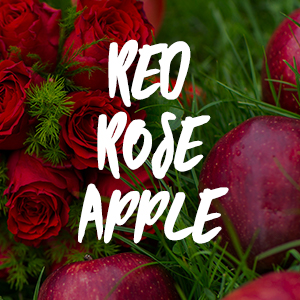 Red Rose Apple Fragrance Oil *