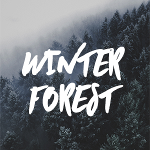 Winter Forest Fragrance Oil *